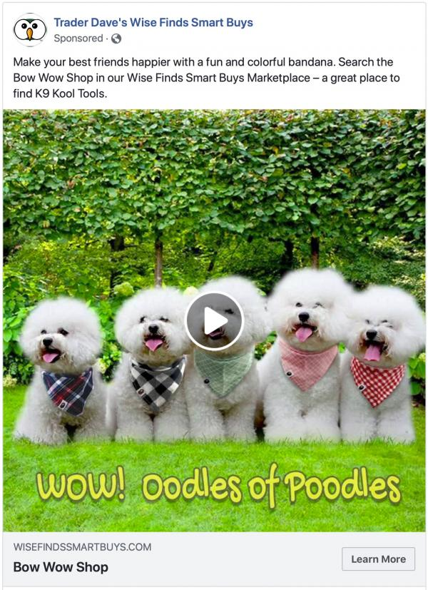Oodles of Poodles Video Ad